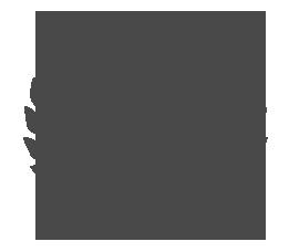 Visioni Italiane 2011