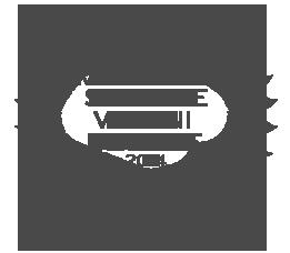 Visioni Italiane 2014